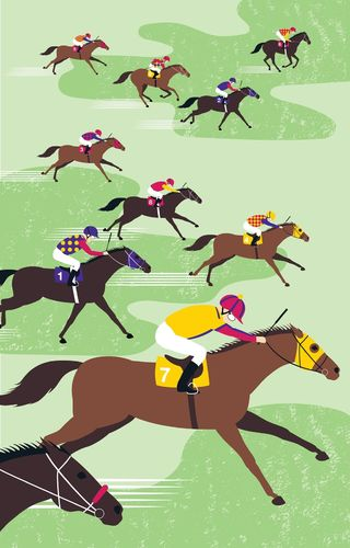 Racehorse Cotton Tea Towel Aussie Horse Design Approx 74x47cm